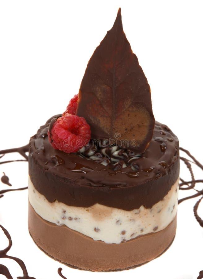 Download Dessert gastronomico fotografia stock. Immagine di cioccolato - 3876370