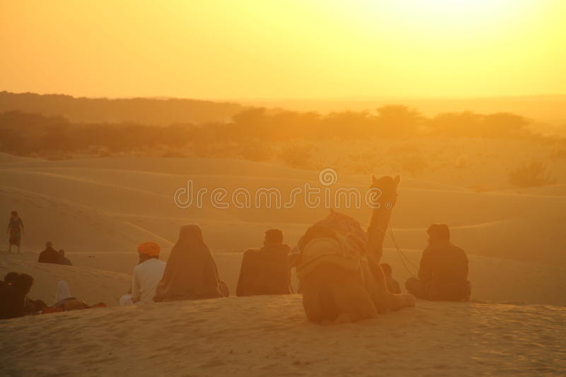 Desert in India royalty free stock images