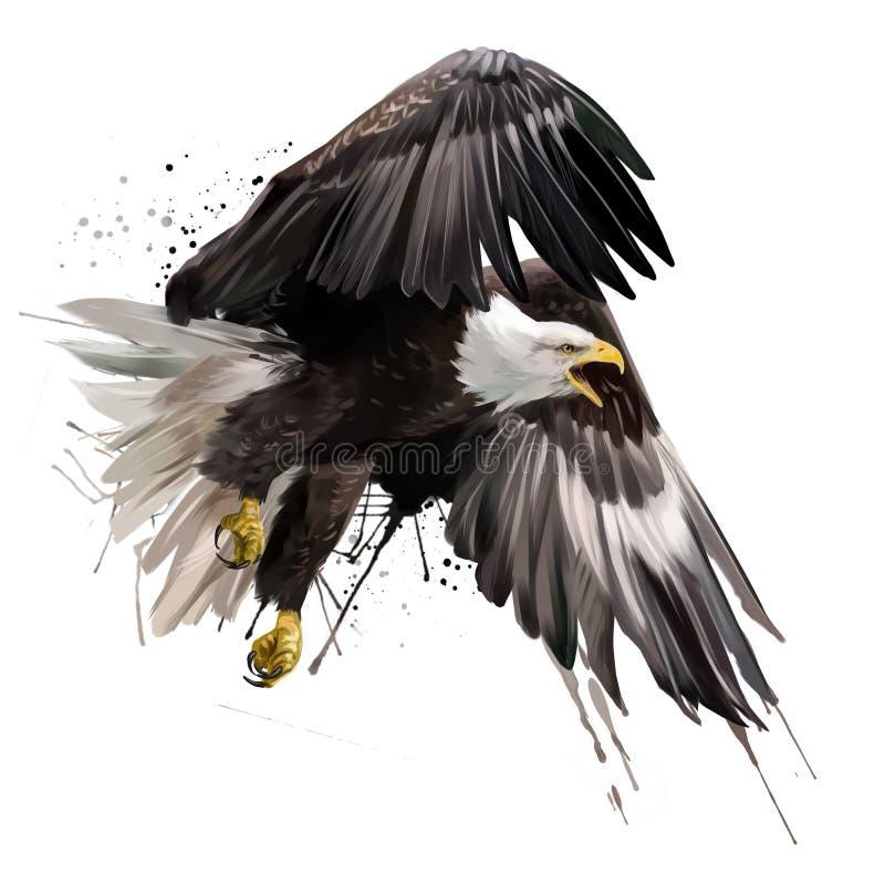 Dessin américain d'aquarelle de vol d'aigle illustration libre de droits