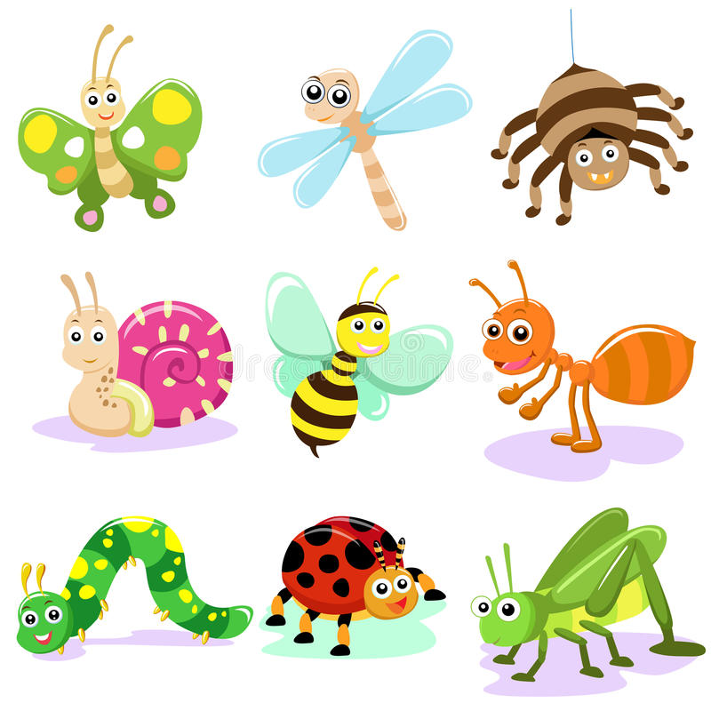 Dessin animé d'insecte illustration libre de droits