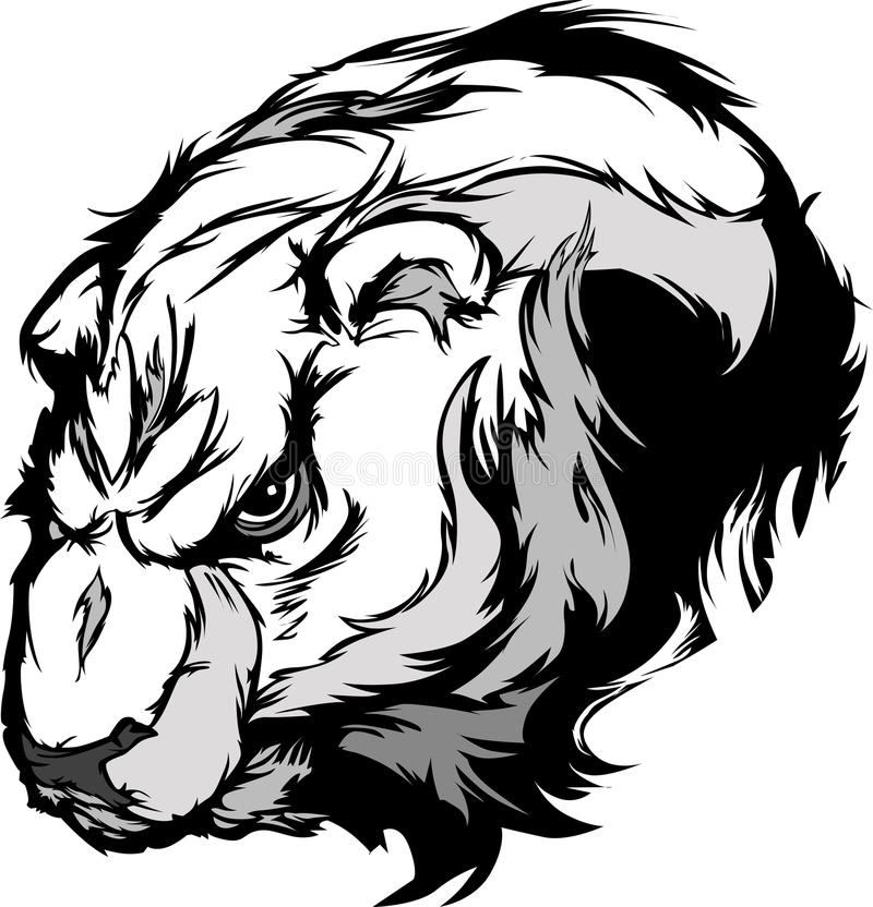 Dessin animé de chef de mascotte d'ours blanc illustration stock