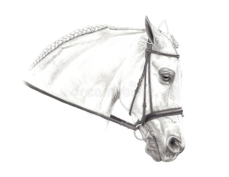 Dessin au crayon à moitié Arabe illustration stock