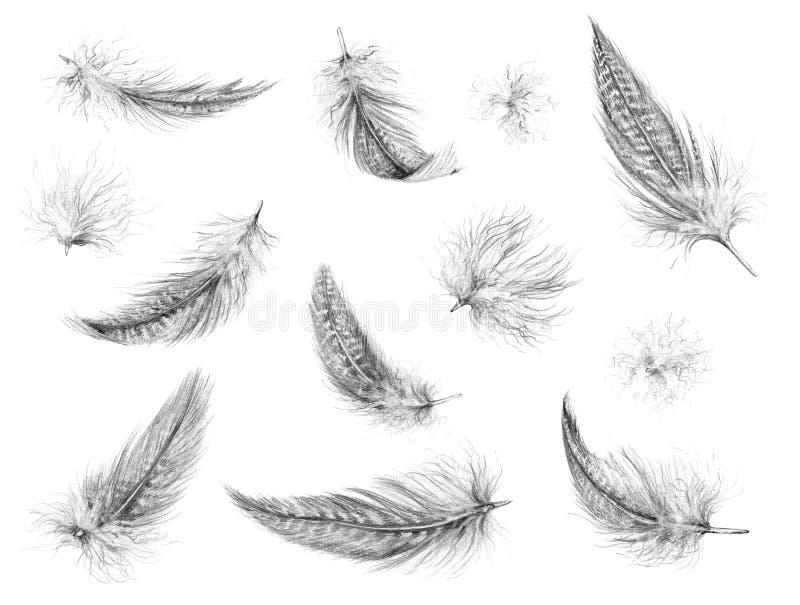 Dessin au crayon d'ensemble de plumes illustration de vecteur
