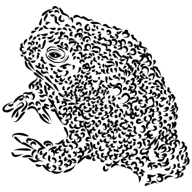 Dessin au trait de crapaud du wyoming illustration stock - Dessin de crapaud ...