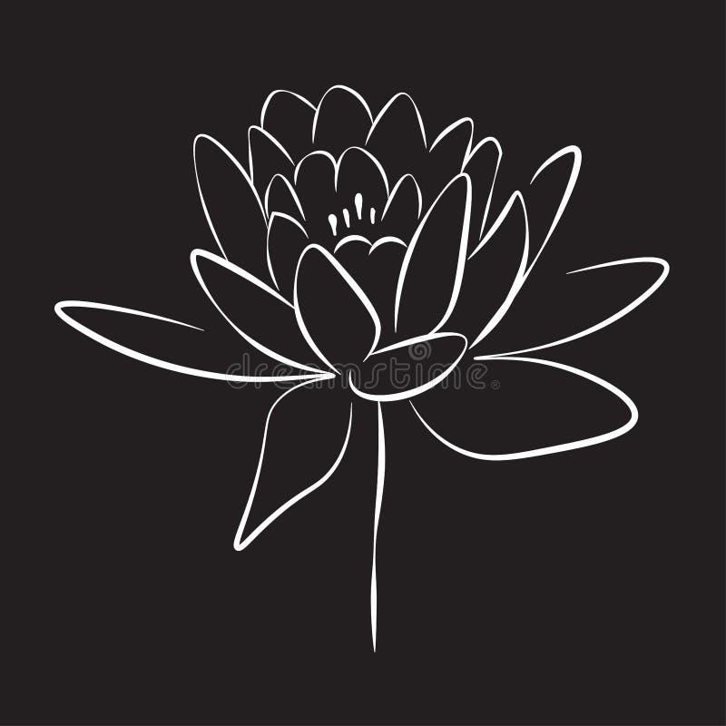 Dessin au trait impression un a monté fleur, illustration de vecteur illustration libre de droits