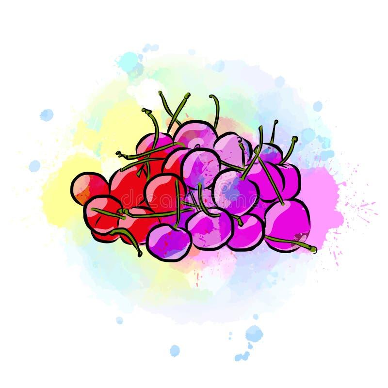 Dessin coloré des cerises illustration libre de droits
