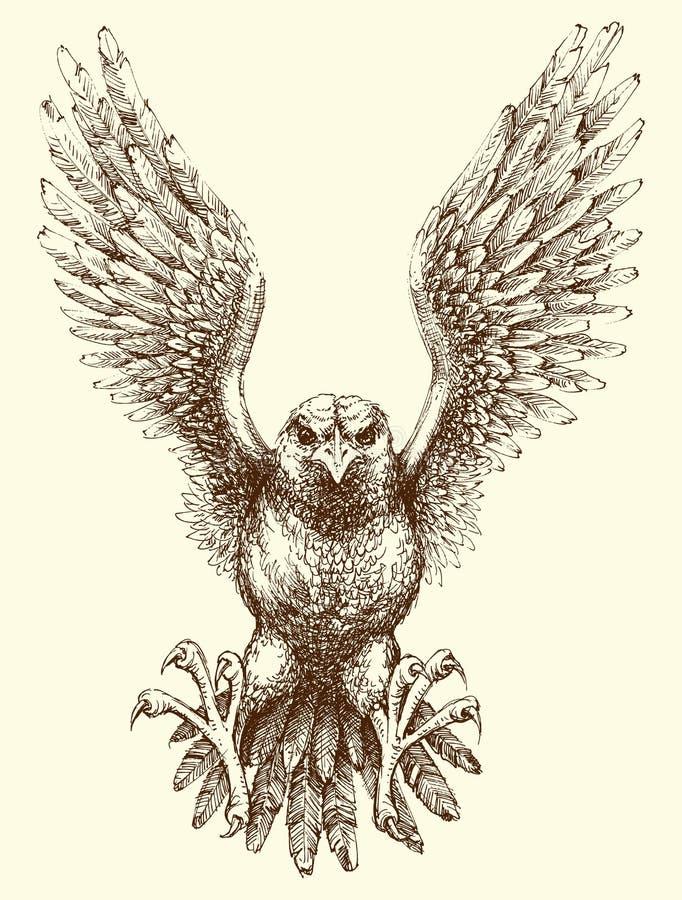 Dessin détaillé volant de main d'aigle illustration stock