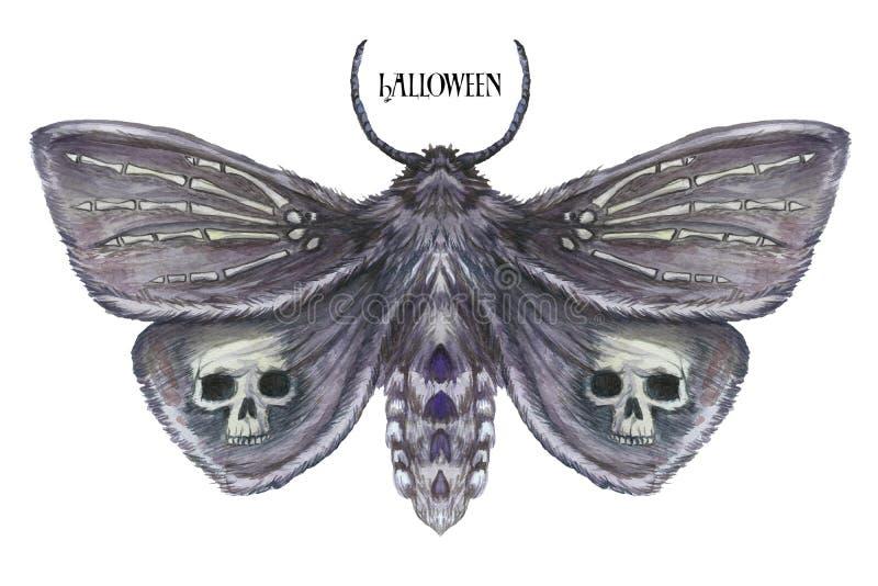 Dessin d'aquarelle d'un papillon de nuit de papillon, d'un papillon terrible des vacances de Halloween avec un crâne sur ses aile illustration stock