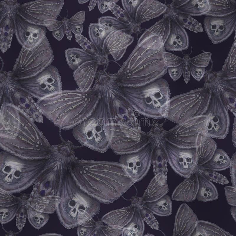Dessin d 39 aquarelle d 39 un papillon de nuit de papillon d 39 un papillon terrible des vacances de - Dessin d un papillon ...