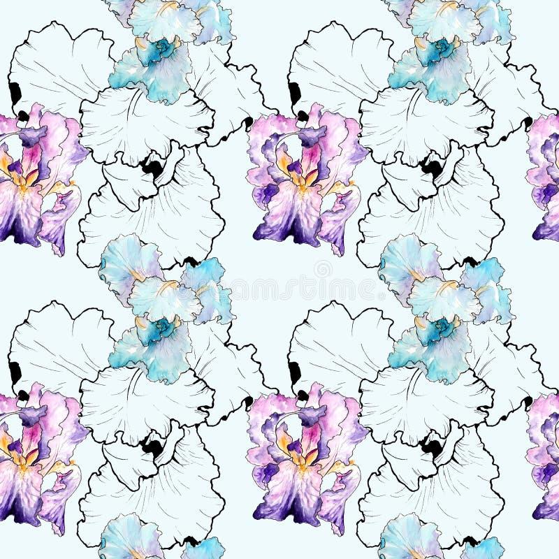 Dessin d'aquarelle des iris Configuration sans joint illustration libre de droits