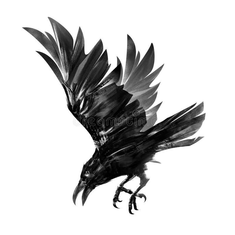 Dessin d'une corneille de plongée Croquis d'isolement d'un oiseau en vol image stock