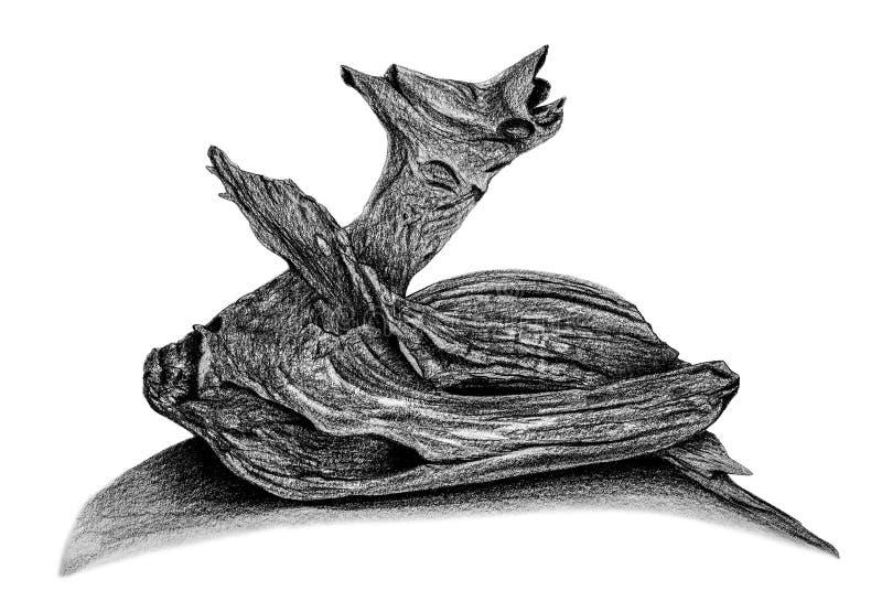 Dessin de bois de construction par le crayon photo stock