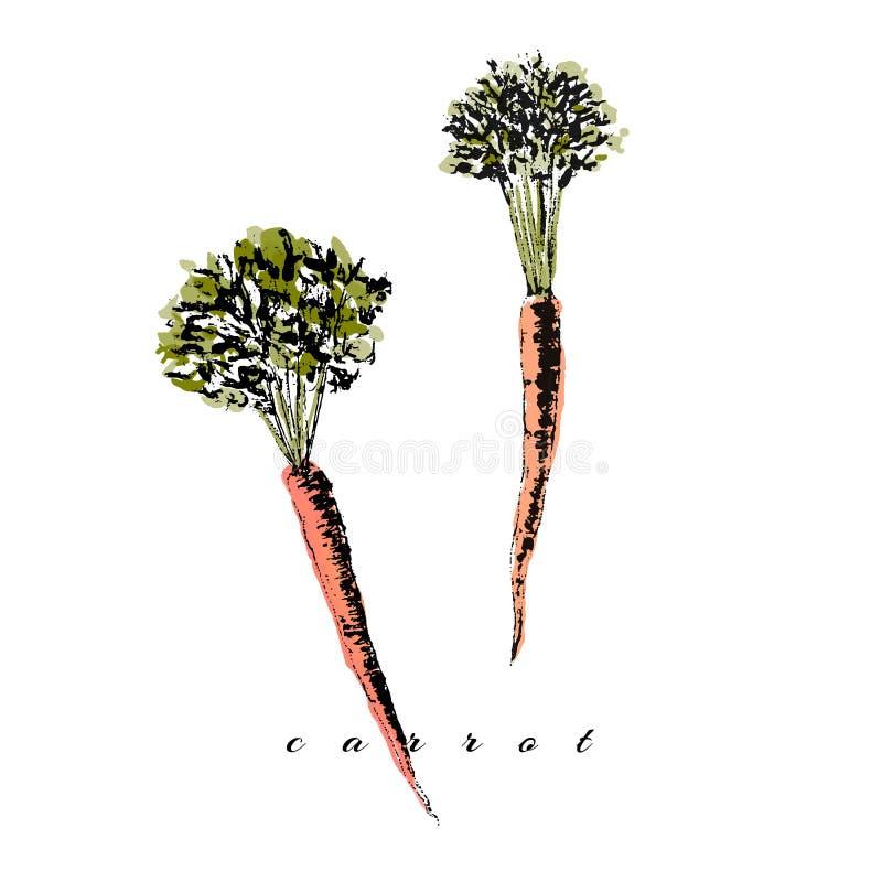 Dessin de carotte illustration stock