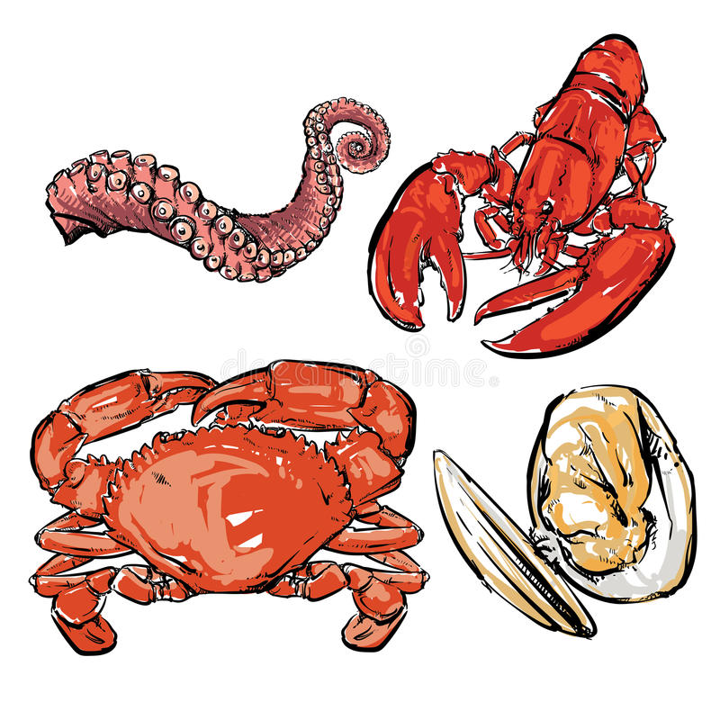 Dessin de dîner de fruits de mer Vecteur tiré par la main Palourde avec couper la PA image libre de droits
