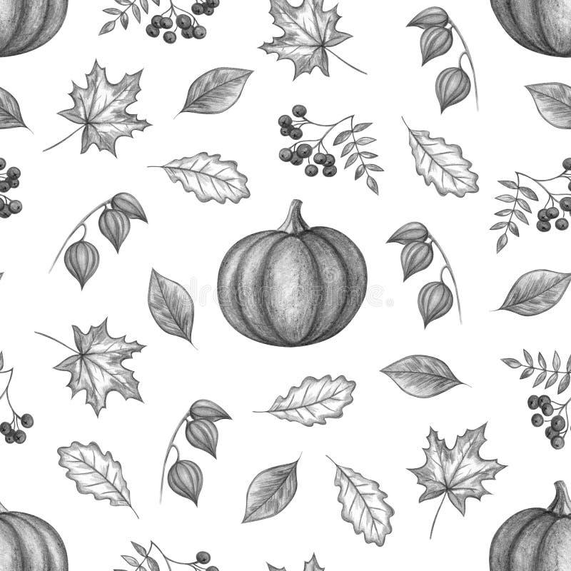 Dessin de main d'automne illustration de vecteur