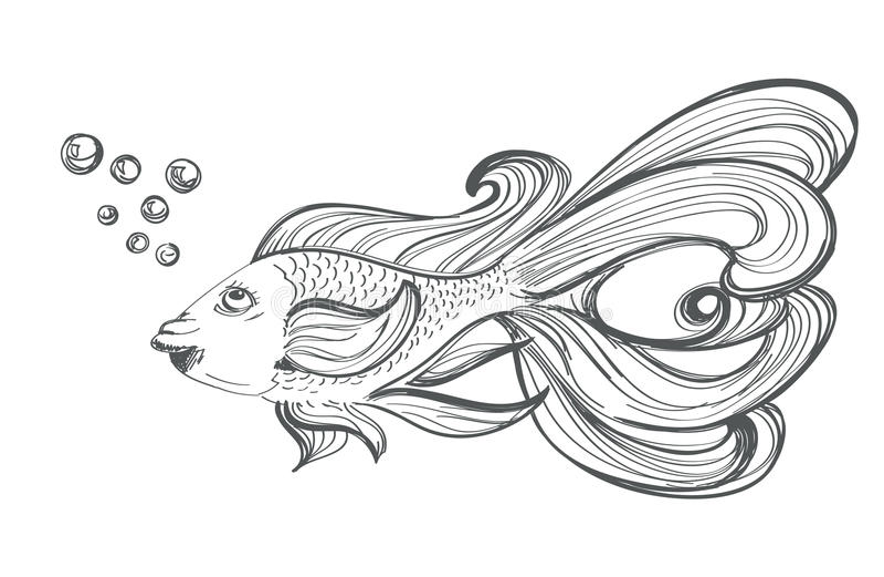 Dessin de poisson rouge illustration de vecteur - Dessin de poisson rouge ...