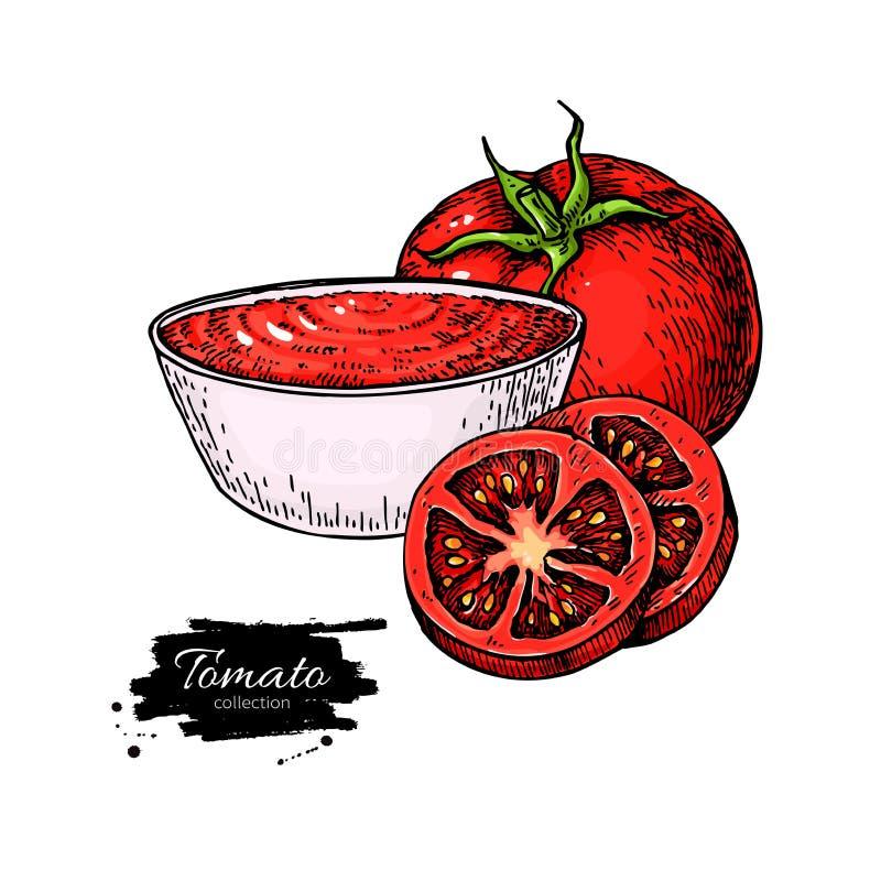 Dessin de sauce tomate dirigez l 39 illustration d 39 isolement avec la cuvette pleine des p tes et de - Dessin de tomate ...
