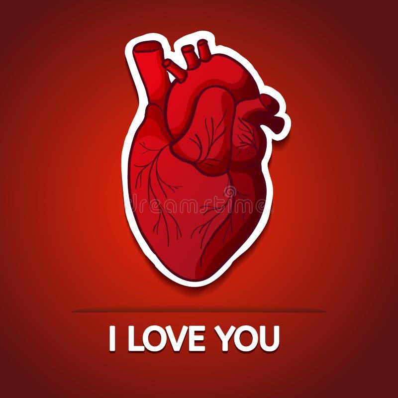 Dessin du coeur humain sur un fond rouge avec illustration - Dessin coeur humain ...