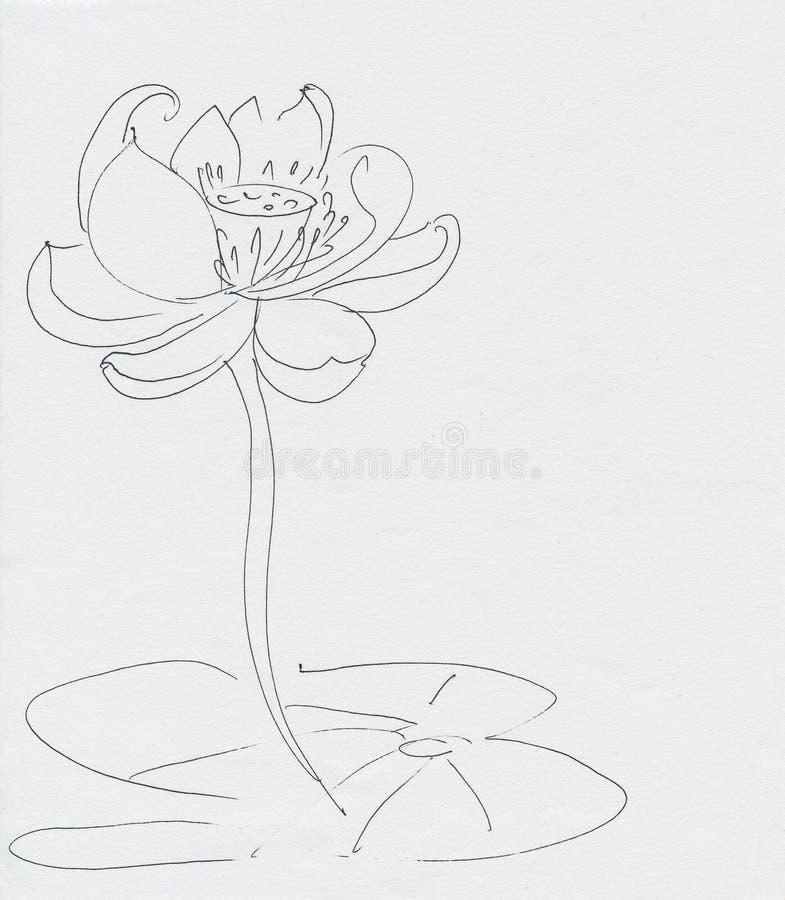 Dessin fleur de Lotus de stylo d'encre de schéma illustration stock