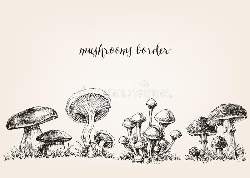 Dessin mignon de champignons illustration libre de droits