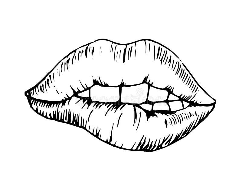 Dessin monochromatique de vecteur de croquis, lèvre mordue photographie stock libre de droits