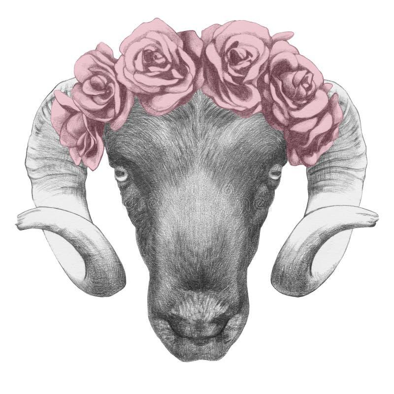 Dessin original de Ram avec des roses illustration stock