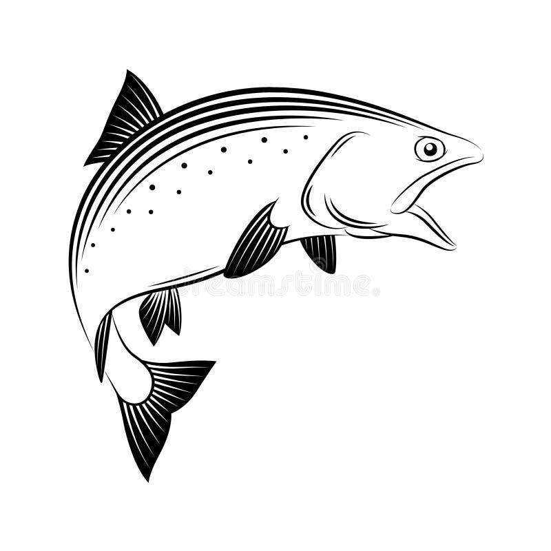 Dessins saumonés illustration libre de droits