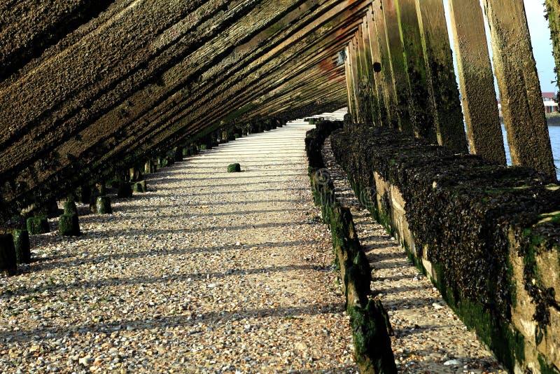 Dessous de brise-lames côtier de bois de construction sur une plage de bardeau image stock