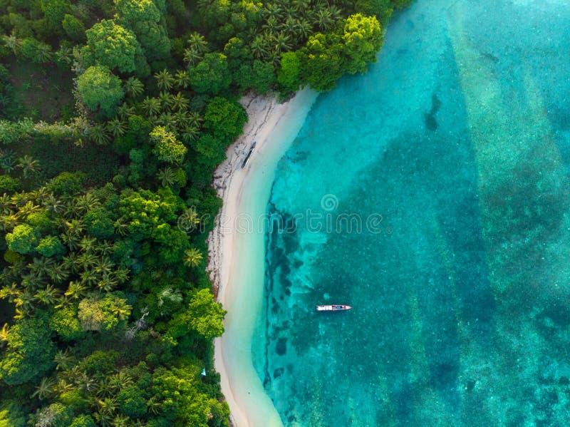 Dessus aérien en bas de lagune bleue de paradis de vue de forêt tropicale immaculée tropicale de plage chez Banda Island, Pulau A photos libres de droits
