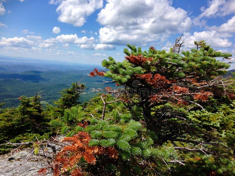 Dessus de bâti Abraham, Vermont image libre de droits