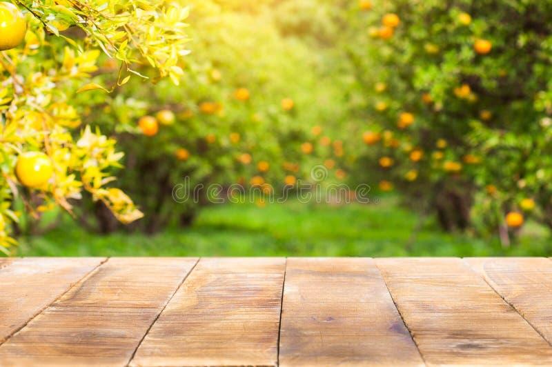 Dessus de table en bois sur la lumière du soleil brillante avec la tache floue du jardin orange dans t images libres de droits