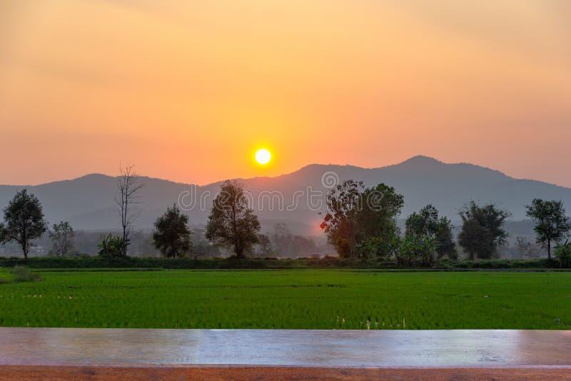Dessus de table en bois vide sur le paysage du gisement vert de riz avec la montagne sur le fond dans le coucher du soleil photographie stock libre de droits