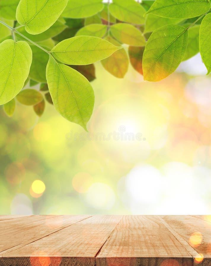 Dessus de Tableau avec le fond clair vert abstrait de feuille et de soleil fin de support image stock