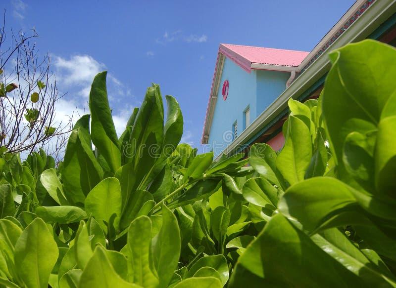 Dessus de toit colorés dans gardes photo stock
