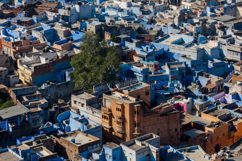 Dessus de toit de la ville bleue de Jodhpur image libre de droits