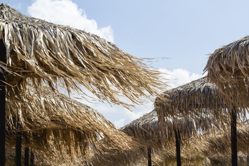 Dessus du parapluie ou des parasols de plage faits de roseau Materia naturel photographie stock libre de droits