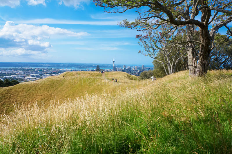 Dessus PF le volcan d'Éden de bâti à Auckland image libre de droits