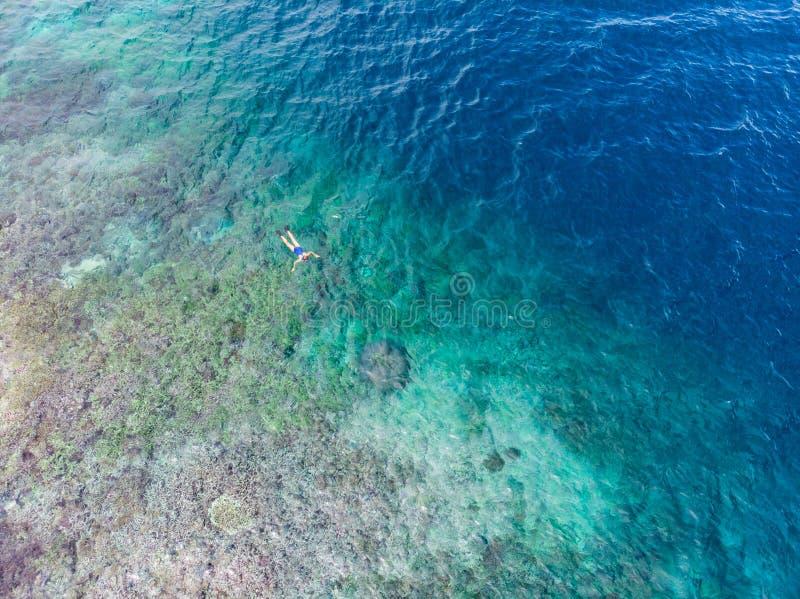 Dessus a?rien en bas des personnes naviguant au schnorchel sur la mer des Cara?bes tropicale de r?cif coralien, l'eau bleue de tu photo stock