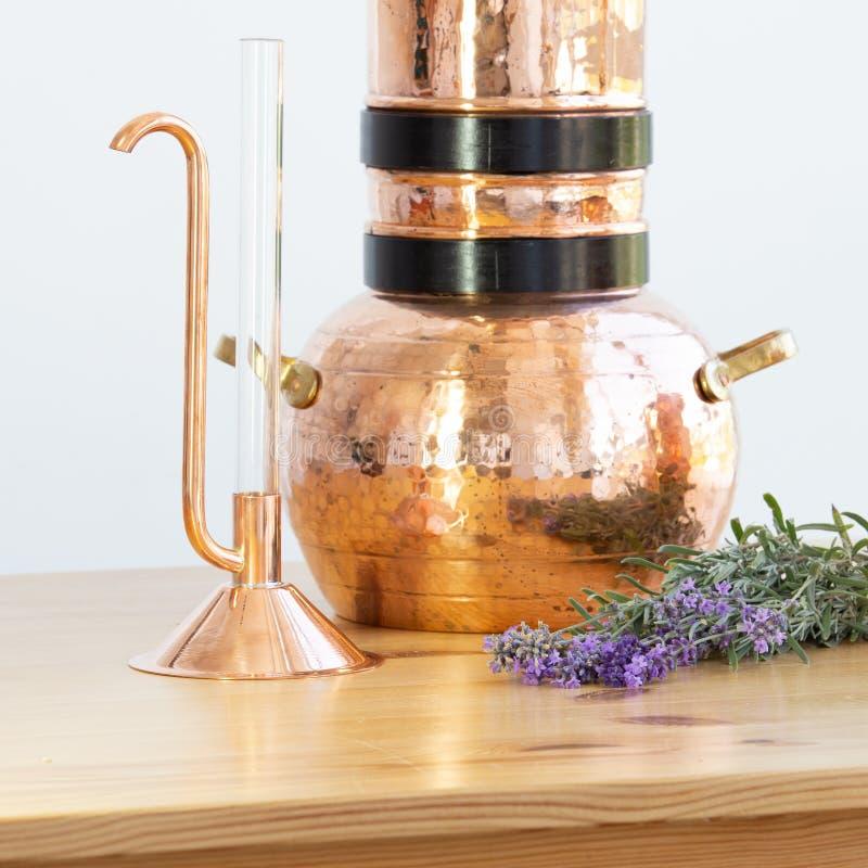 Destillera apparaturalembic med blommor för nödvändig olja royaltyfria foton