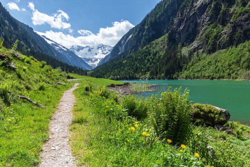 Destination idyllique d'excursion scénique dans l'été dans les Alpes, près du lac Stillup, parc naturel d'Alpes de Zillertal, Aut photo stock