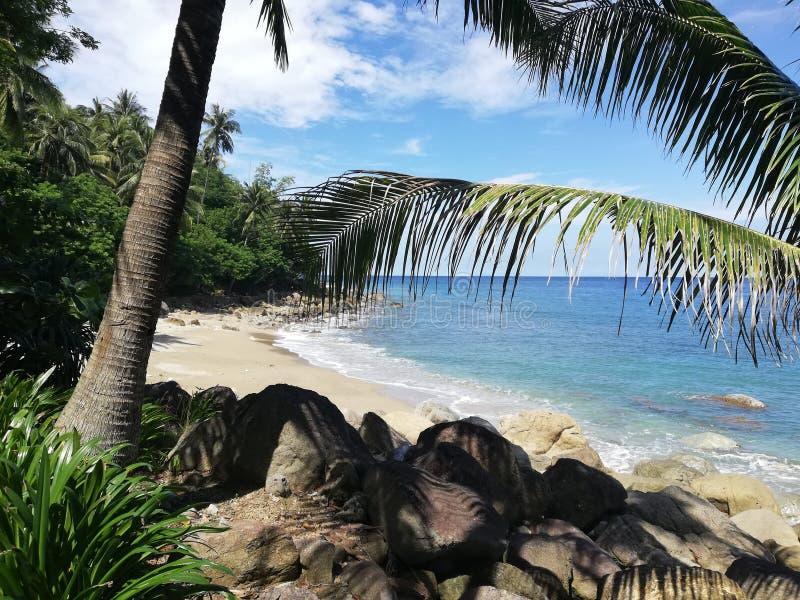 Destinazioni di luna di miele - spiaggia sola tropicale su Mindoro, Filippine fotografia stock libera da diritti