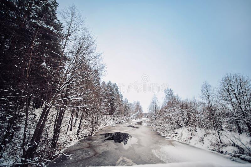 Is-destinerad flod i dentäckte skogen av resan royaltyfria bilder