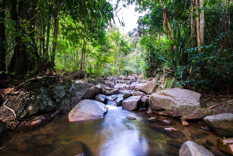 Destinos Rio Celeste do curso de Costa Rica Nature Background Travel Destinations Rio CelesteCosta Rica Nature Background foto de stock royalty free