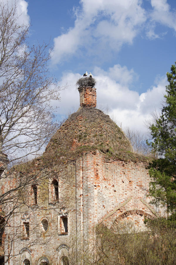 Destroyed orthodox church with a nest of storks stock photo