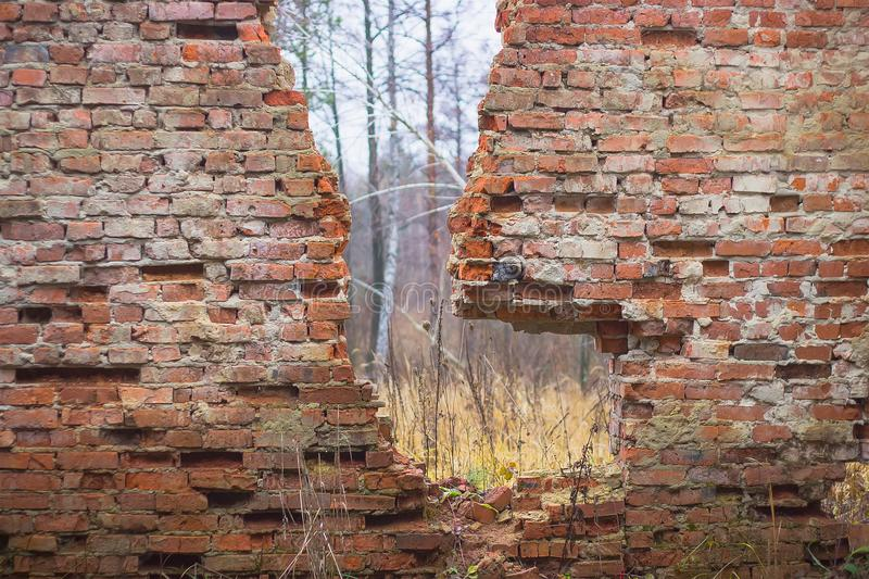 Destroyed red brick wall stock image