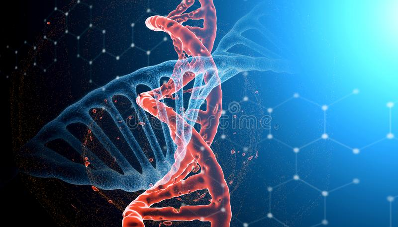 destrucción fotorrealista de la imagen 3D de la molécula roja de la DNA contra la DNA estable azul El concepto de virus y de deca stock de ilustración