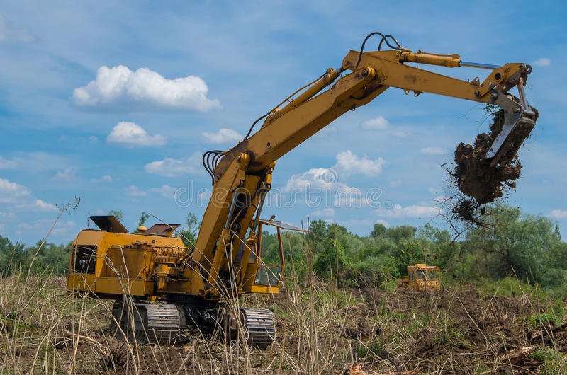 Destruction of forests with digger. Seizure of forest land for agriculture. Destruction of forests. Seizure of forest land for agriculture. Removing stumps with stock photo