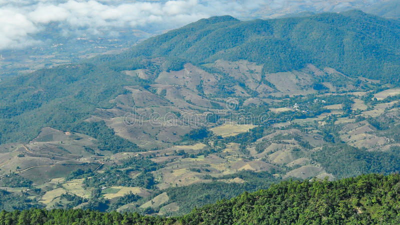 Destruição da floresta no chiangmai, Tailândia imagem de stock royalty free