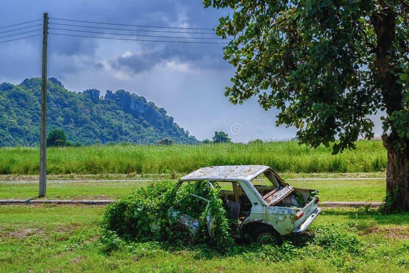 A destruição oxidada do carro, carro velho abandonado é coberto de vegetação com a grama, um ol fotos de stock
