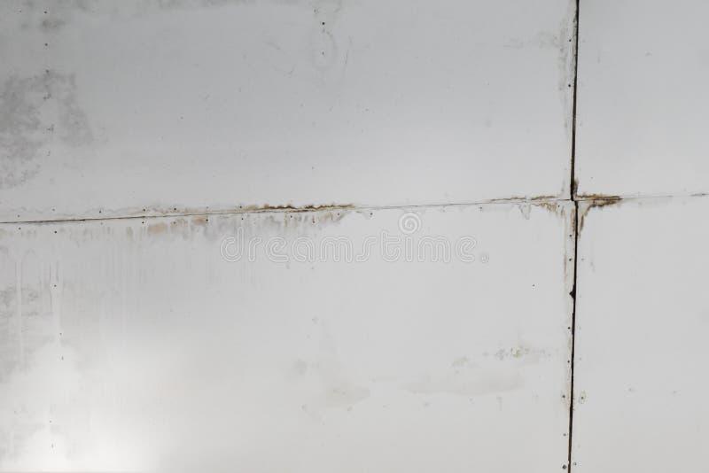 Deszczówka przecieki od dachowej przyczyny szkody gipsowa deska, sufit i płytki i obraz royalty free